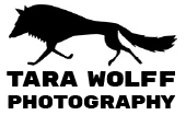 Tara Wolff Photography